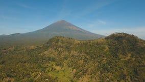 Terreni coltivabili del paesaggio della montagna e villaggio Bali, Indonesia Fotografia Stock Libera da Diritti