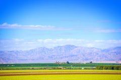 Terreni coltivabili del sud di California Fotografie Stock Libere da Diritti