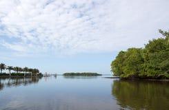 Terreni paludosi, Florida, U.S.A. Fotografia Stock