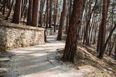 Terrenkur, walkway in park royalty free stock images