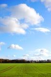 terreno agricolo Fotografie Stock