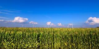 Terreno agricolo dell'Illinois Fotografie Stock Libere da Diritti