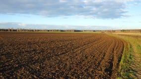 Terreno agricolo dopo coltivazione, sera di autunno Immagine Stock Libera da Diritti