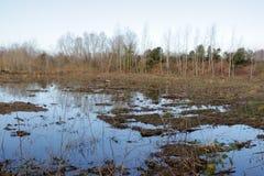 Terreno agricolo ed inondazione Immagini Stock Libere da Diritti