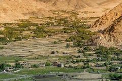 Terreno agricolo - Leh, Ladakh, India Fotografia Stock Libera da Diritti