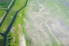 Terreno agricolo nocivo da agricoltura aggressiva Fotografie Stock