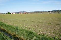 Terreno agricolo in primavera Fotografia Stock Libera da Diritti