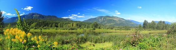 Terreno alluvionale del fiume Columbia dal parco centennale, Revelstoke, Columbia Britannica Fotografia Stock Libera da Diritti