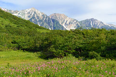 Terreno alpino sul supporto Karamatsu, alpi del Giappone Fotografia Stock Libera da Diritti