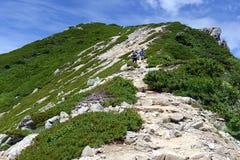 Terreno alpino sul supporto Karamatsu, alpi del Giappone Immagini Stock Libere da Diritti