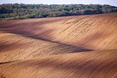 Terreno arabile della sorgente Scena ondulata di agricoltura della primavera Landsca rurale Immagini Stock Libere da Diritti
