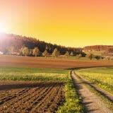 Terreno arabile e pascoli in Svizzera Fotografia Stock Libera da Diritti