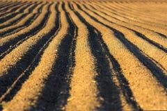 Terreno arato Immagini Stock