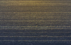 Terreno arato Fotografie Stock Libere da Diritti