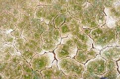 Terreno arido Fotografia Stock Libera da Diritti