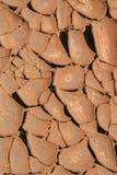 Terreno asciutto Immagine Stock