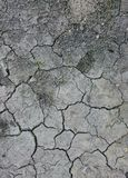 Terreno asciutto della crepa Fotografia Stock Libera da Diritti