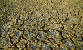 Terreno asciutto durante la siccità Fotografie Stock Libere da Diritti