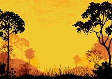 Terreno boscoso Immagine Stock Libera da Diritti