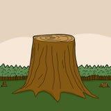 Terreno boscoso con il pascolo verde Fotografie Stock Libere da Diritti