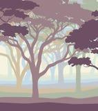 Terreno boscoso pastello Fotografia Stock