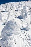 Terreno coberto de neve Imagem de Stock