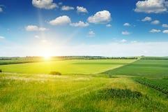 Terreno collinoso, giacimento della molla ed alba su cielo blu Fotografia Stock Libera da Diritti