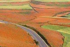 Terreno coltivabile Fotografie Stock Libere da Diritti