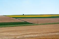 Terreno coltivabile arabile Fotografia Stock Libera da Diritti