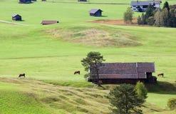 Terreno coltivabile bavarese in Germania Fotografia Stock Libera da Diritti