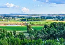 Terreno coltivabile con il cielo blu e nuvoloso fotografia stock