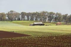 Terreno coltivabile del capo della Tabella Immagine Stock