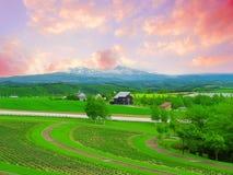 terreno coltivabile della campagna Fotografie Stock Libere da Diritti