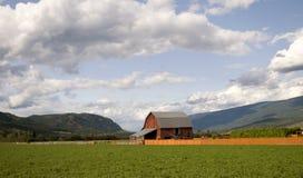 Terreno coltivabile della Columbia Britannica Immagini Stock Libere da Diritti