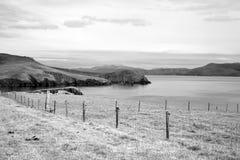 Terreno coltivabile della penisola delle Dingle sul modo atlantico selvaggio Immagine Stock Libera da Diritti