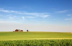 Terreno coltivabile della prateria Immagine Stock