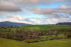 Terreno coltivabile della Tasmania Immagine Stock Libera da Diritti