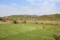 Terreno coltivabile delle colline di Morni Immagini Stock Libere da Diritti
