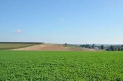Terreno coltivabile di Amish Immagini Stock Libere da Diritti