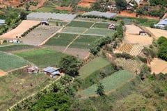 Terreno coltivabile di Dalat - Vietnam Immagine Stock Libera da Diritti