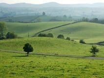 Terreno coltivabile di rotolamento vicino a Kendal Fotografia Stock Libera da Diritti