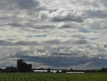 Terreno coltivabile di Wisconsin con i fabbricati agricoli Immagini Stock Libere da Diritti