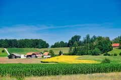 Terreno coltivabile fertile, Slovenia orientale immagini stock