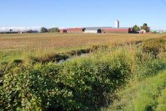 Terreno coltivabile a Richmond, Columbia Britannica immagine stock