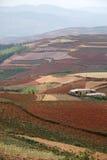 Terreno coltivabile rosso con il villaggio in dongchuan della porcellana Immagini Stock Libere da Diritti