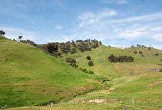 Terreno coltivabile rurale, Nuovo Galles del Sud, Australia Fotografia Stock