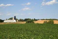 Terreno coltivabile rurale scenico Fotografia Stock Libera da Diritti