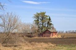 Terreno coltivabile stagionato della tettoia di rosso Fotografia Stock