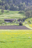 Terreno coltivabile - Svizzera Fotografie Stock Libere da Diritti