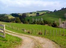 Terreno coltivabile verde Immagini Stock Libere da Diritti